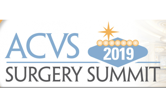 American College of Veterinary Surgeons 2019 Surgery Summit (ACVS)