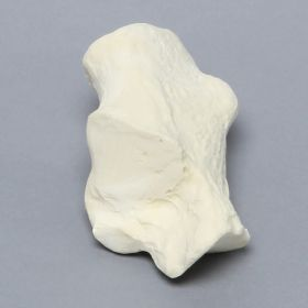 Calcaneus, Solid Foam, Left