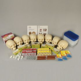 KIMSeattle Forensic Facial Reconstruction 8-Station Lab Kit