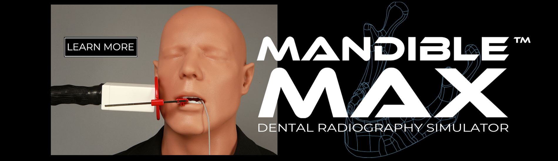https://www.sawbones.com/mandible-max-dental-radiography-simulator-kit-includes-mannequin-laptop-and-software1573.html